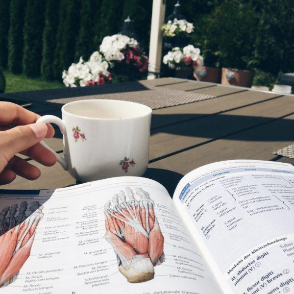 Medizinstudium – Das 1. Semester an der Uni Leipzig