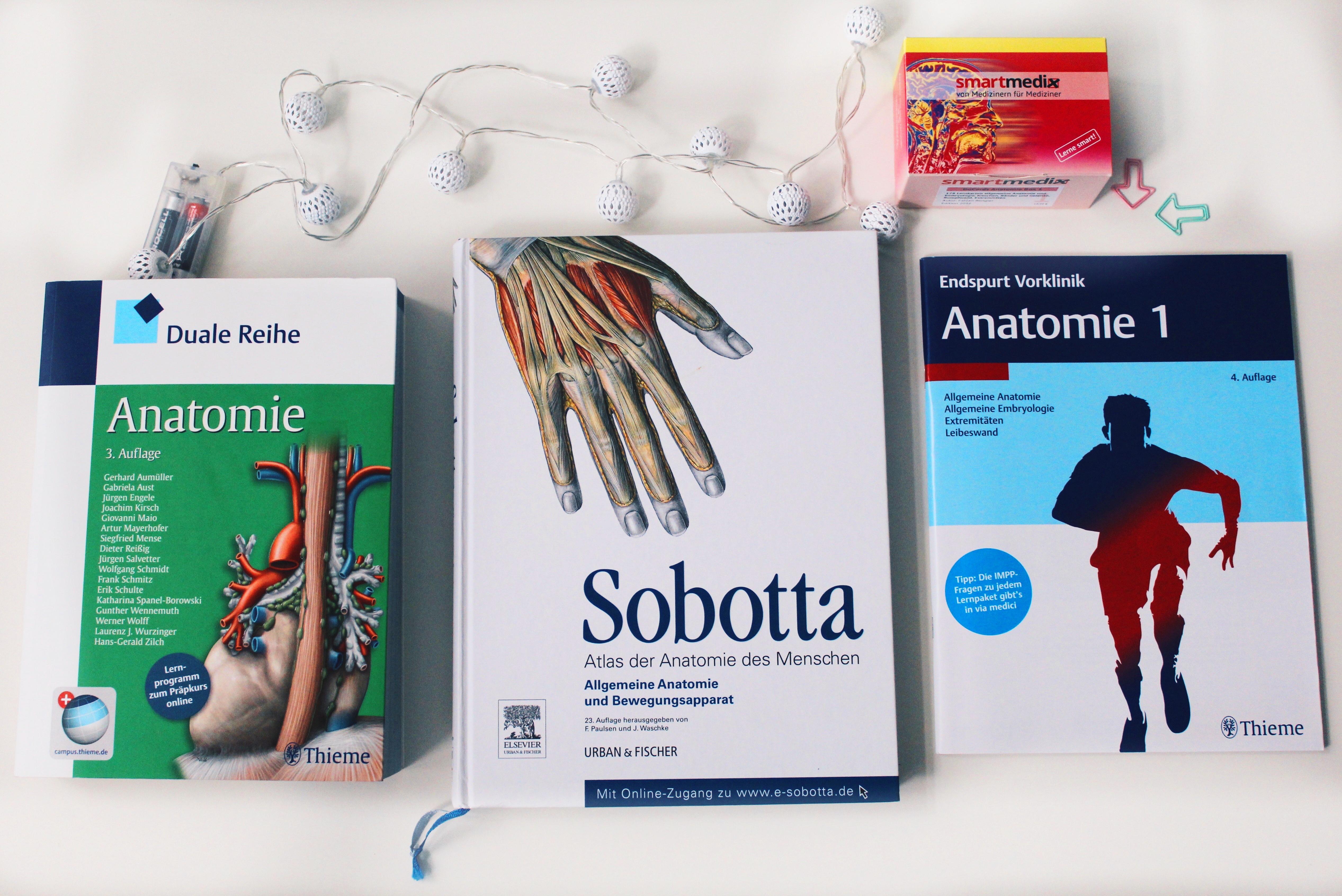 Das 2. Semester Medizinstudium an der Uni Leipzig