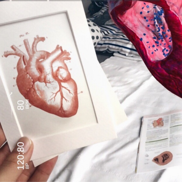 Wahlfach – Einführung in die kardiovaskuläre Bildgebung