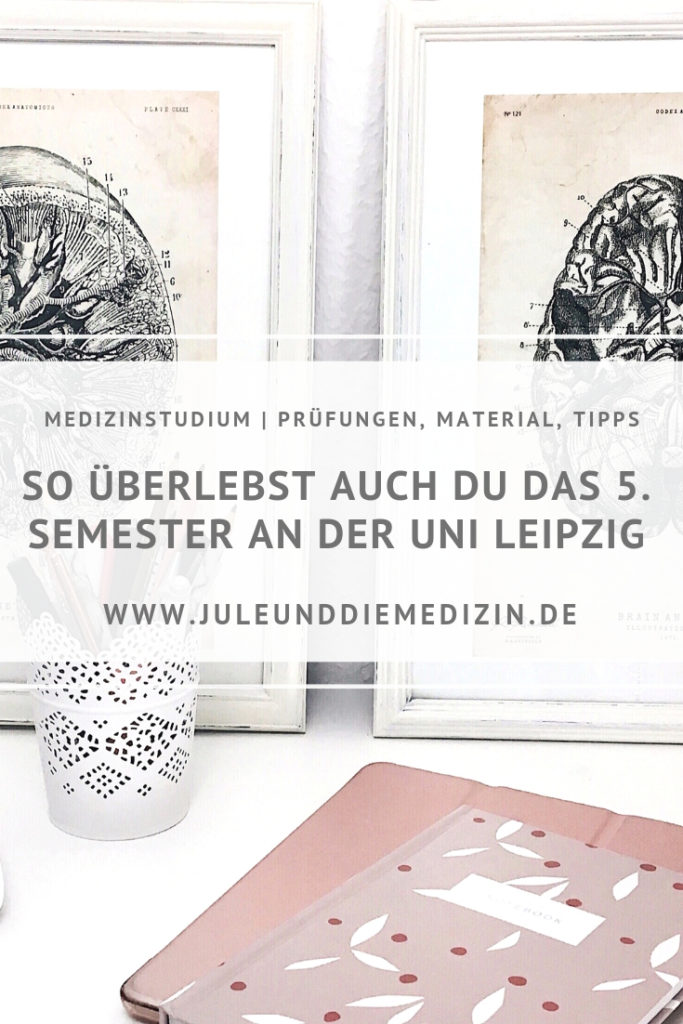 Medizinstudium: Das fünfte Semester an der Uni Leipzig! medicine, study, student, medical, medstudent, university, leipzig